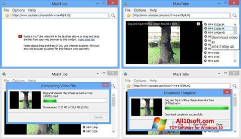 Screenshot MassTube for Windows 10