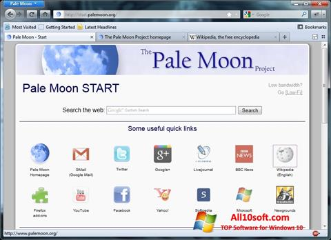 Screenshot Pale Moon for Windows 10