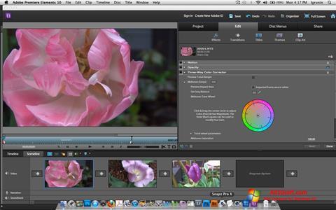 Screenshot Adobe Premiere Elements for Windows 10