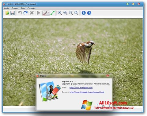 Screenshot Inpaint for Windows 10