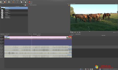 Screenshot Kdenlive for Windows 10