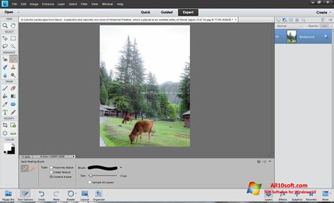 Screenshot Photoshop Elements for Windows 10