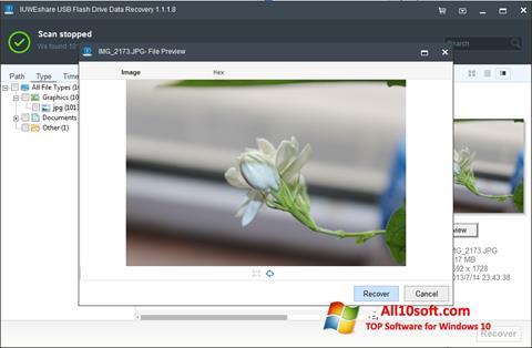 Screenshot USB Flash Drive Recovery for Windows 10