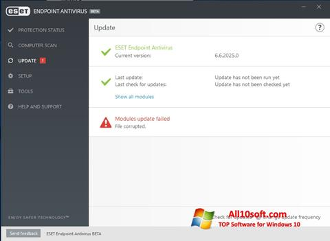 Screenshot ESET Endpoint Antivirus for Windows 10