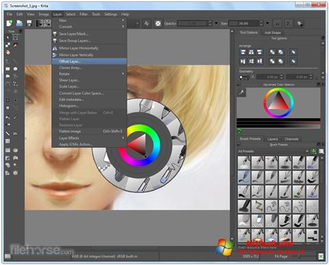 Screenshot Krita for Windows 10