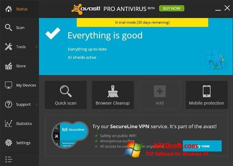 Screenshot Avast! Pro Antivirus for Windows 10