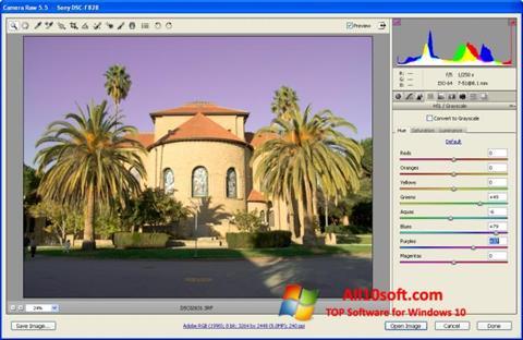 Screenshot Adobe Camera Raw for Windows 10